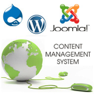 CMS Based Websites Services